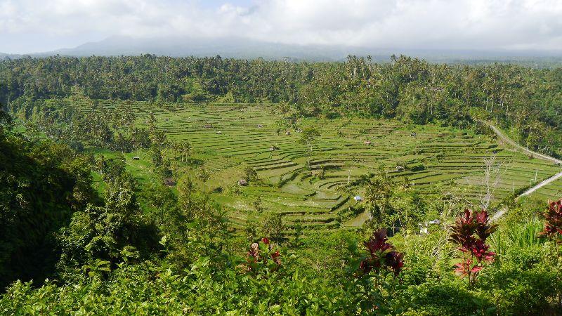 Indonesien 044