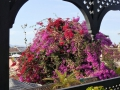 Marokko_web103