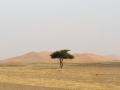 Marokko_web187