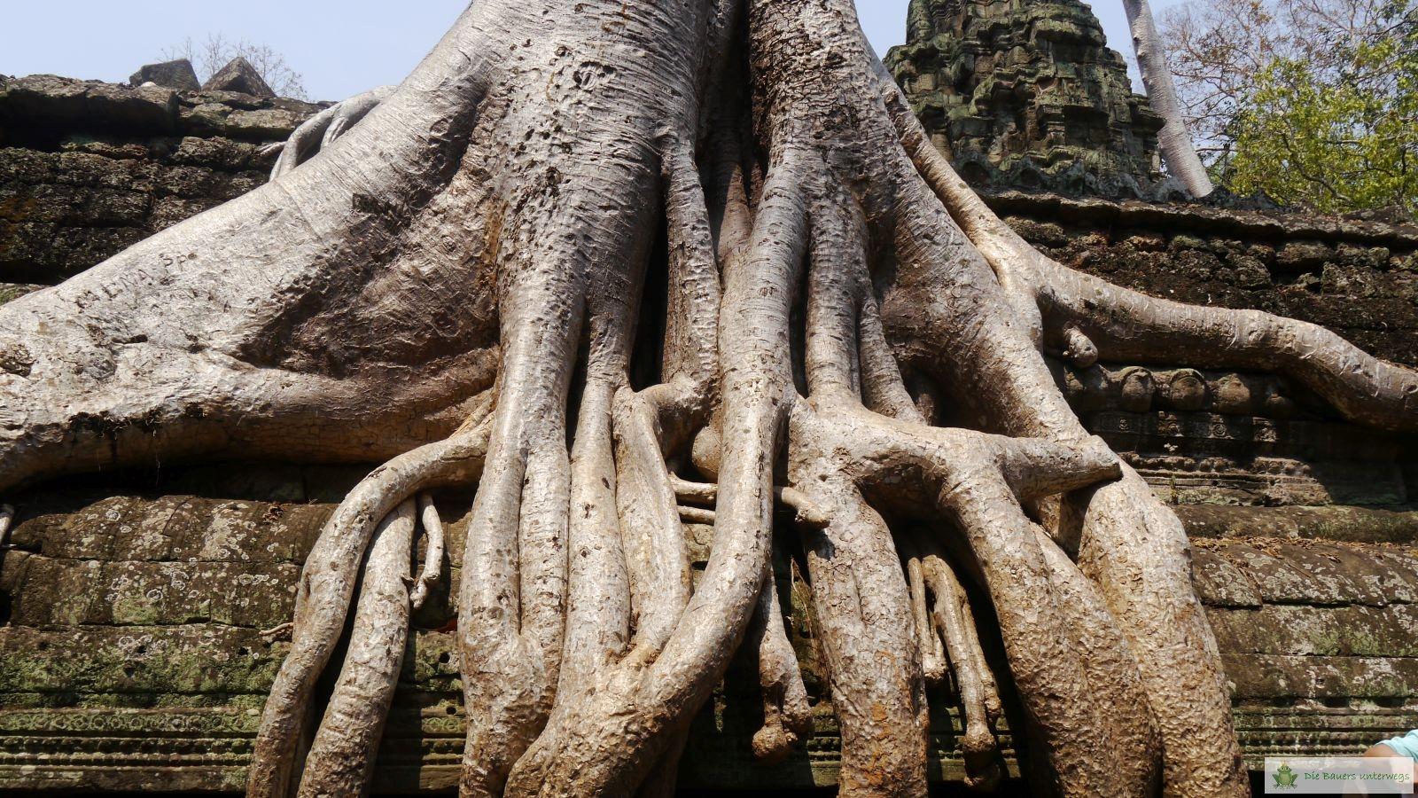 Vietnam_fb066